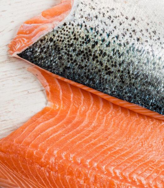 filete de salmon 2